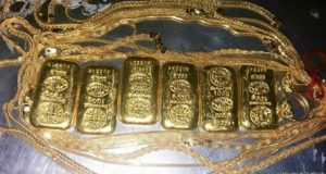 gold hafazot