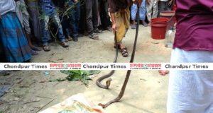 snake-khela