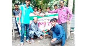 plant adsha