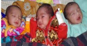 Three Baby
