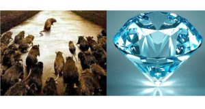Diamond MOuse