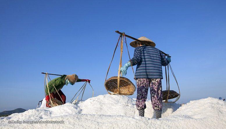 salt-fields.....