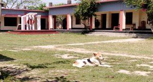 Amiravad school