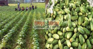 ATTACHMENT DETAILS Khira-Chasabad-