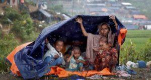 Rohingiya picture