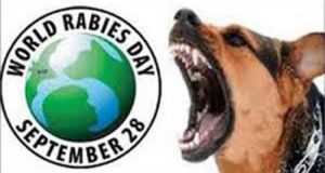 rabies-day-..