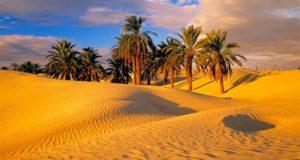 Sahara--desert-..